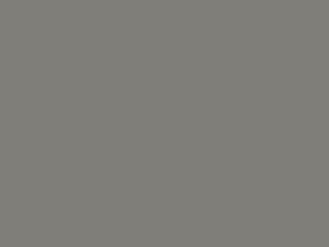 grey Swatch